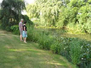 Views of Greenfield Farm B&B Garden Pond